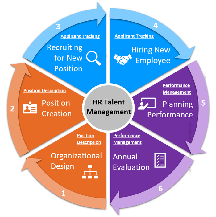 Talent Management Life Cycle Talent Management Human Resources Job Search Tips