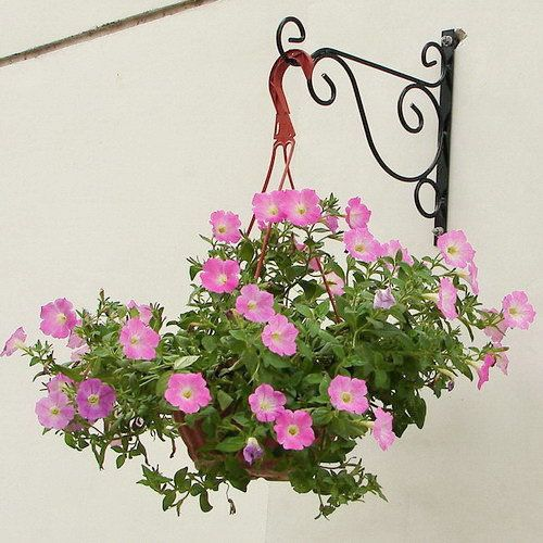 Iron Flower Pot Hook Hook Rack Hanging Basket Frame Wrought Iron