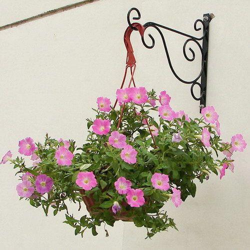 Triple Arm Hanging Basket Plant Stand Plants For Hanging Baskets Plant Stands Outdoor Hanging Flower Baskets