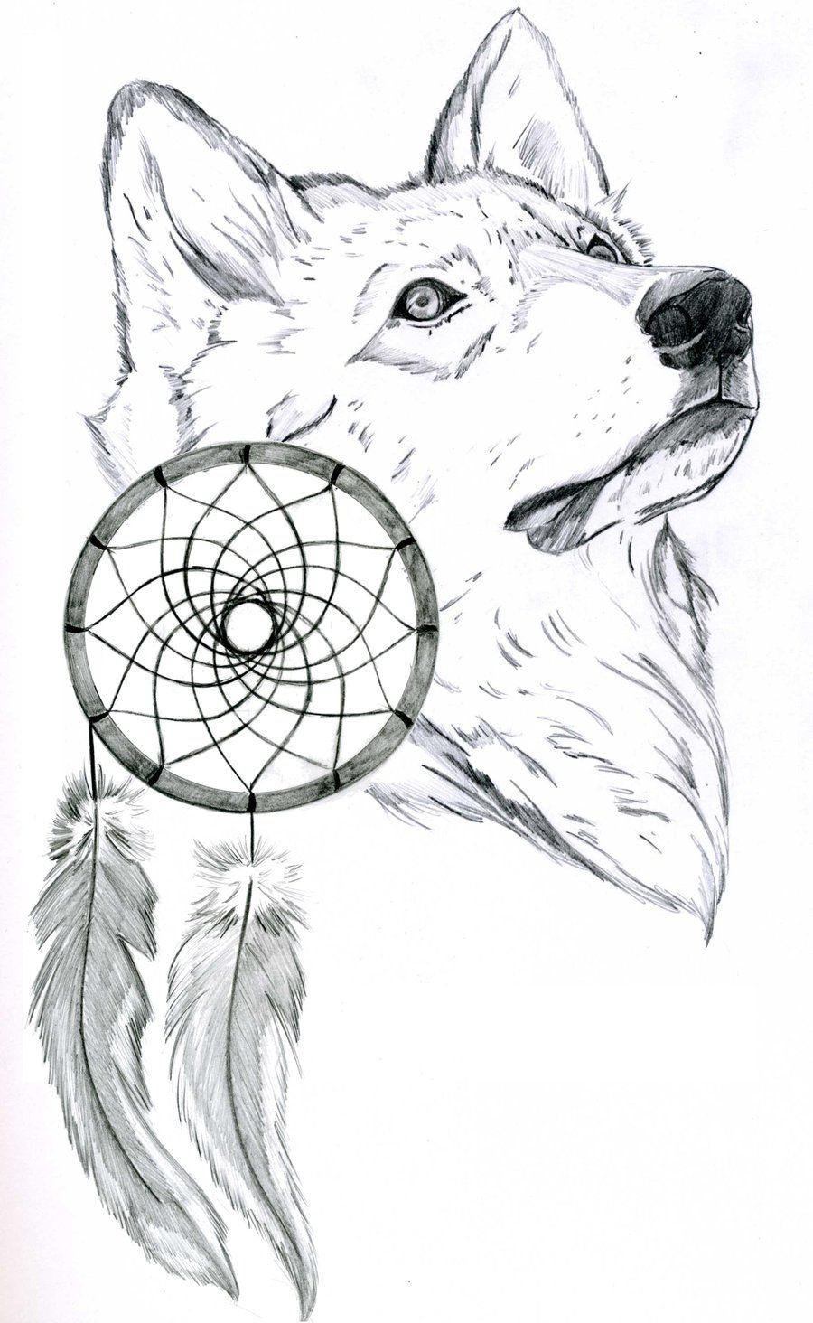 Coloring pages dream catchers - Drawings Of Dream Catchers Wolf And Dream Catcher By Ferrell32