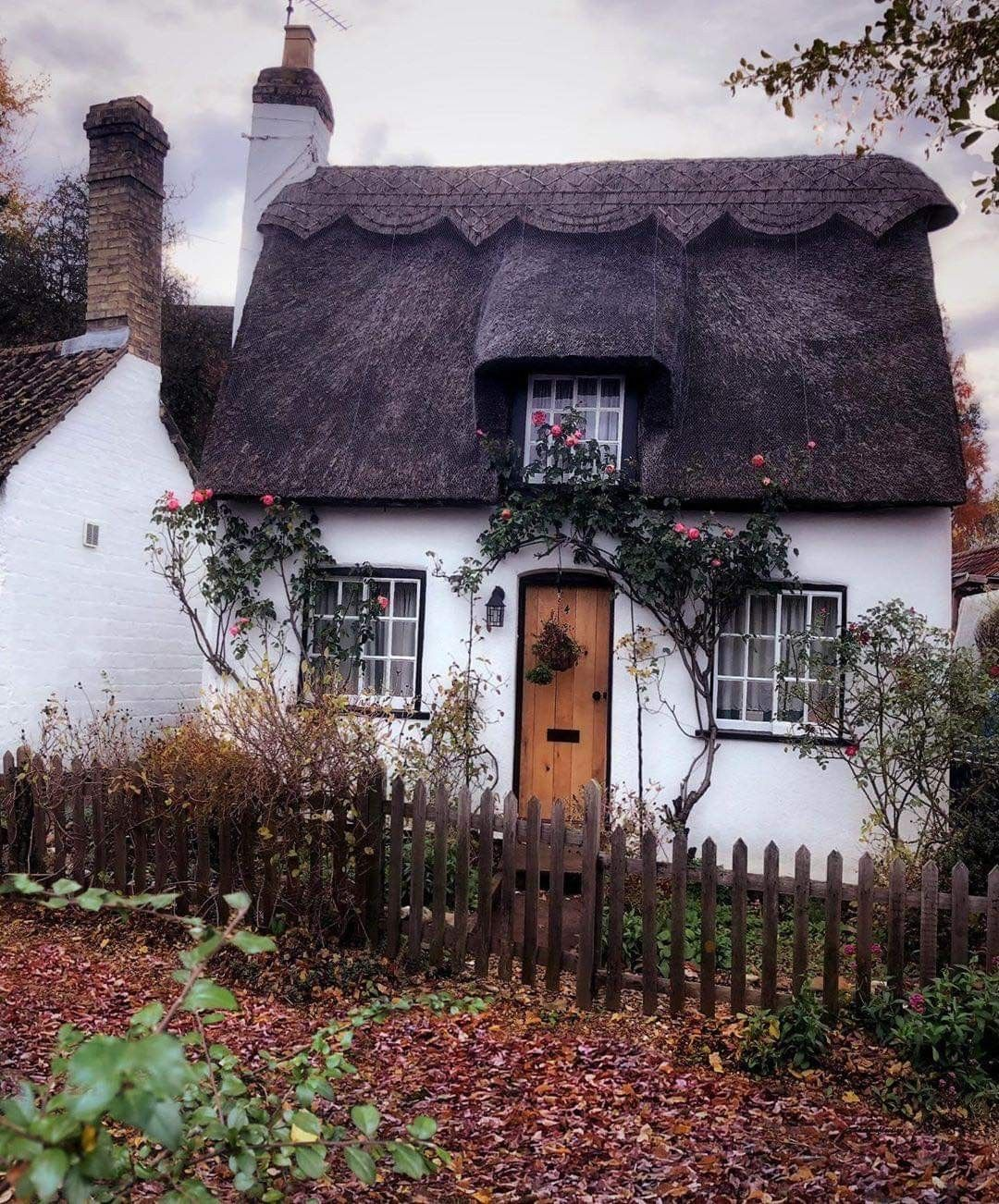 wee cottage with a thatched roof #witchcottage