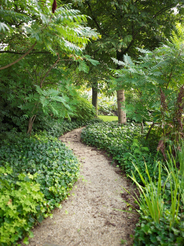 Tophovenier moderne tuin for Tuinarchitect kleine tuin
