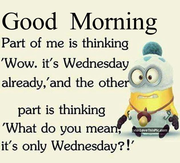 Good Morning Funny Minion Wednesday Quote Good Morning Wednesday Hump Day Morning Quotes Funny Good Morning Wednesday Good Morning Funny