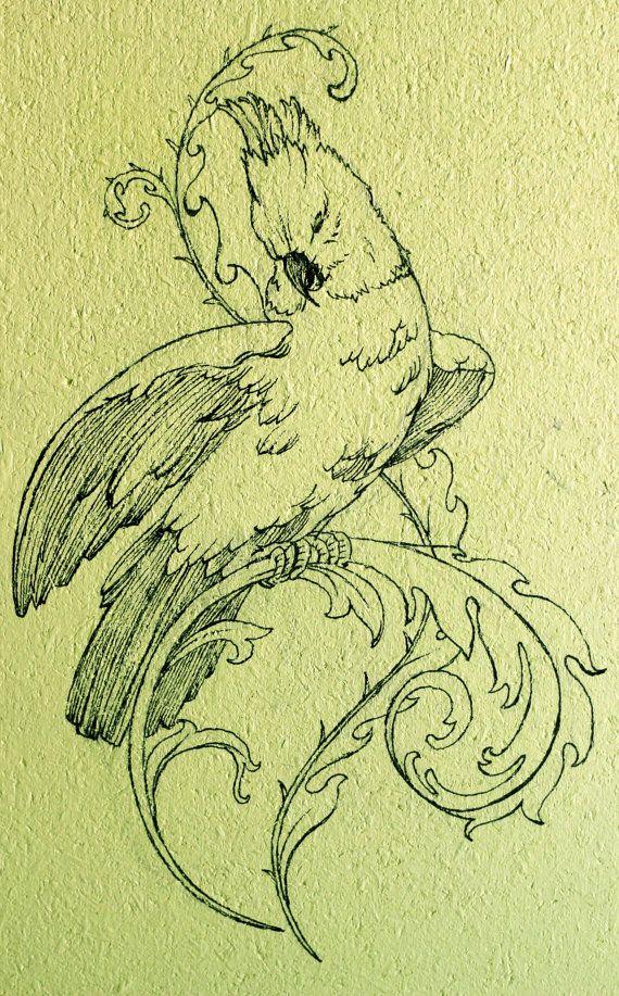 Parrot Original Artwork Black Ink Line Drawing by AugustArtStudio, $50.00