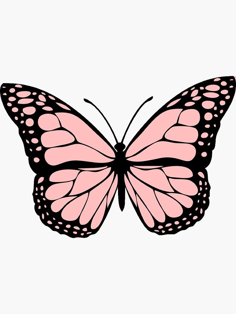 Light Pink Butterfly Sticker By Karestolarczyk Butterfly Wallpaper Iphone Butterfly Art Painting Pink Drawing