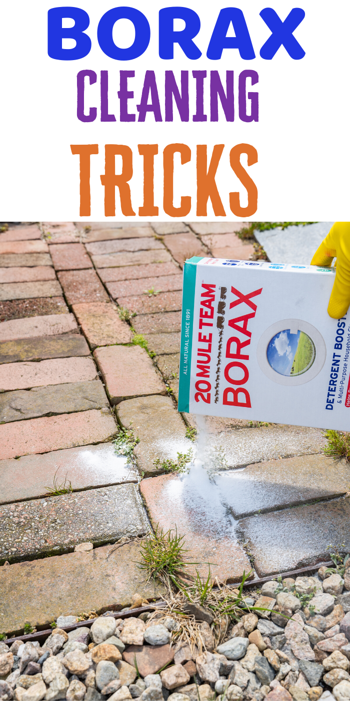 Using borax to clean some areas in your house will become so easy. specially in your bathroom. You can use it in the toilet or shower to clean it, even can be use to kill insects. #borax #boraxcleaning #boraxcleaninghacks #tipsandtricks #easycleaning #cleaning