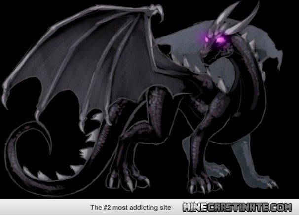 Real Life Ender Dragon Wallpaper