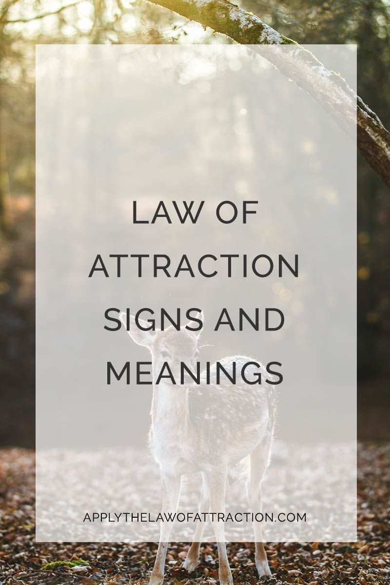 Law Of Attraction Signs Symbols And Meanings Laws Of Attraction