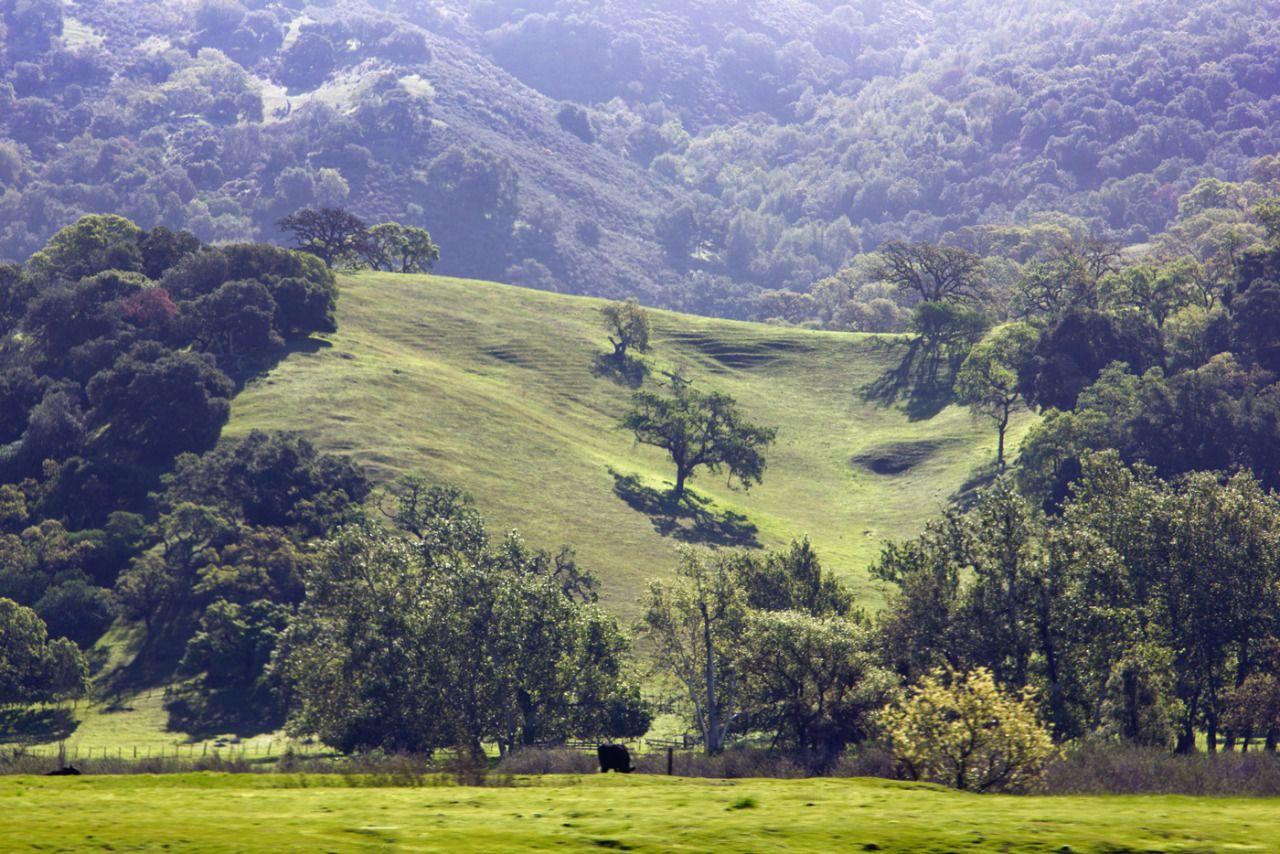 On the road again…start of our finalUSA-roadtrip. - #California #fotografie #Kalifornien #Landscape #landschaft #lensblr #on #photographers #tumblr