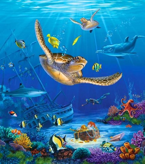 under ocean photos undersea world art pinterest ocean photos and ocean. Black Bedroom Furniture Sets. Home Design Ideas