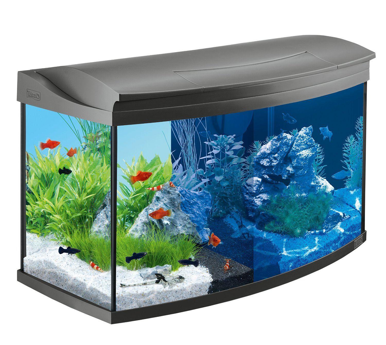Das neue Aquarium im Internet oder doch lieber im Fachhandel kaufen ...