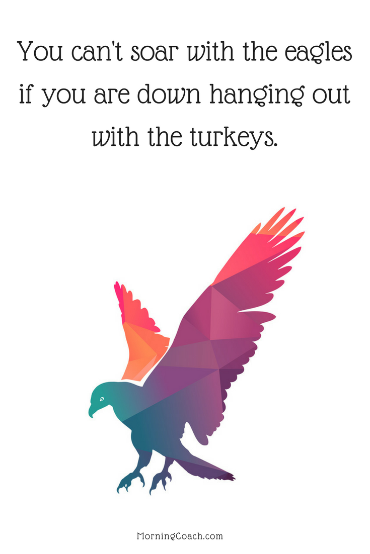You Can T Soar With The Eagles If You Are Down Hanging Out With The Turkeys Morning Motivation Funny Me Greatful