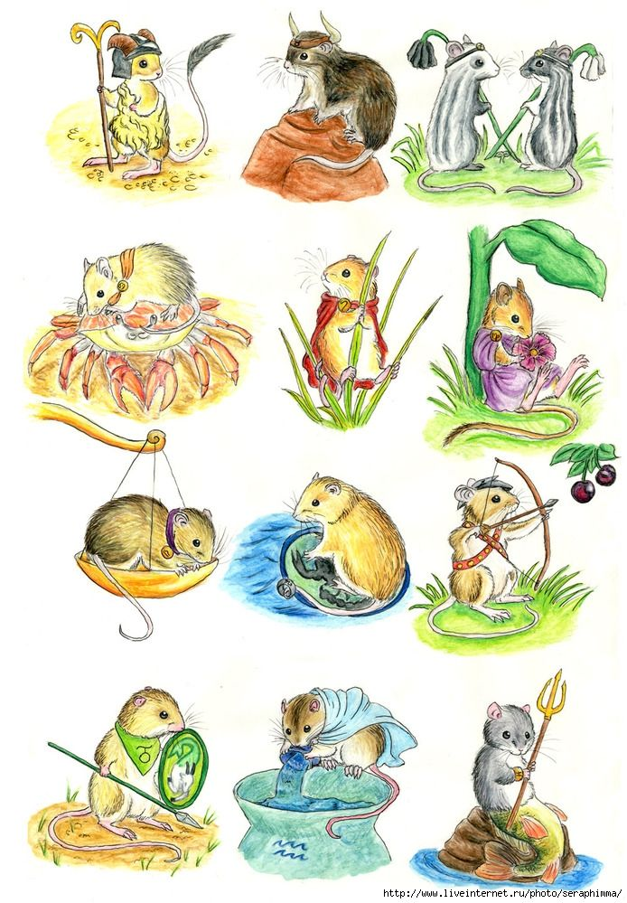 Знаки зодиака мышь картинка