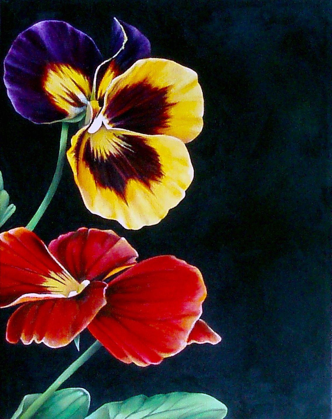 Pansies Archival Print Of My Original Acrylic On Canvas Etsy Pansies Pansies Flowers Painting