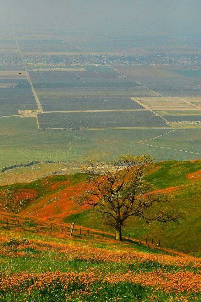 Bear Valley Springs in the hills Abo e Bakersfield, California.