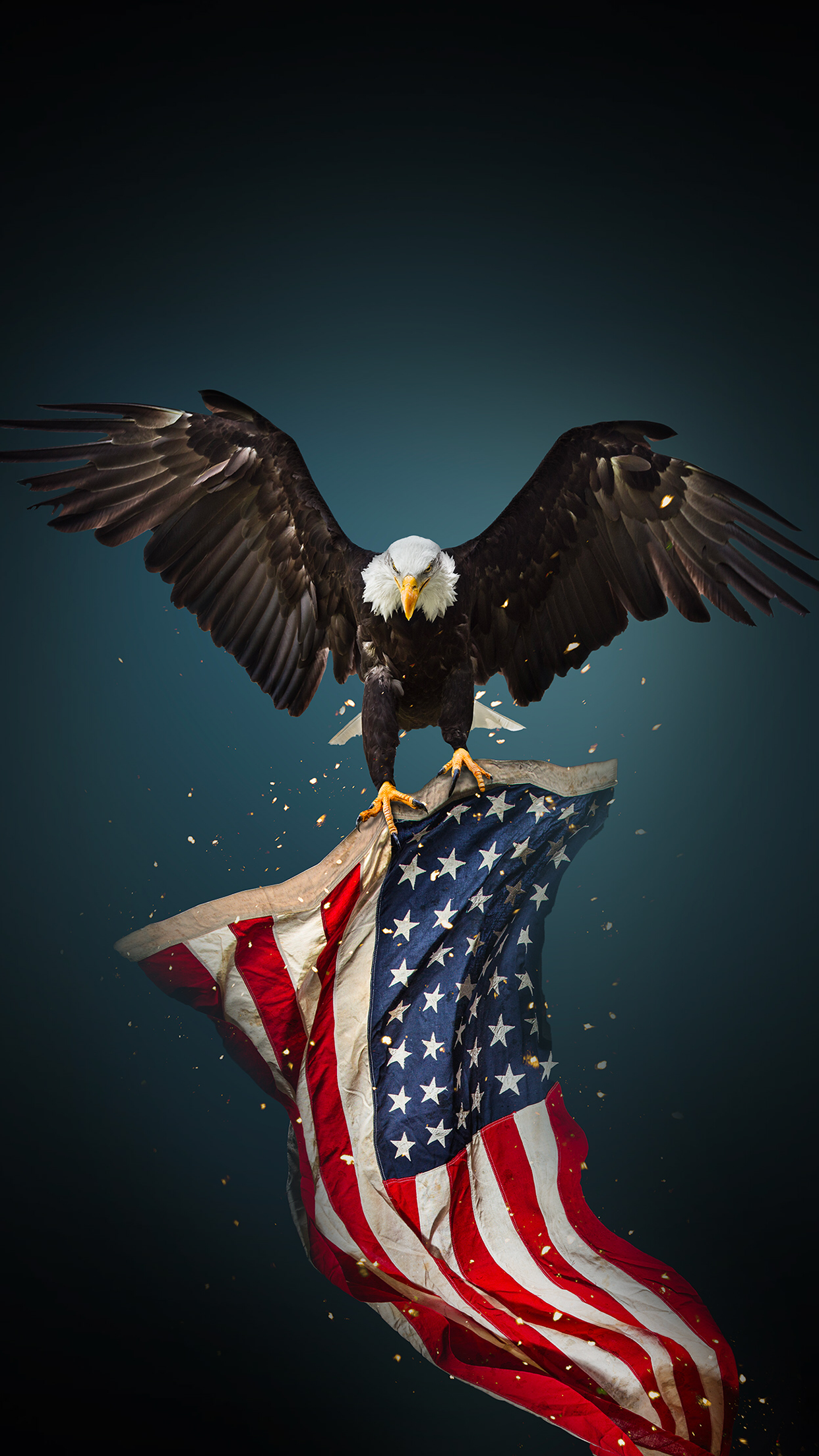 Image By M Lundeen On American Bald Eagle American Flag