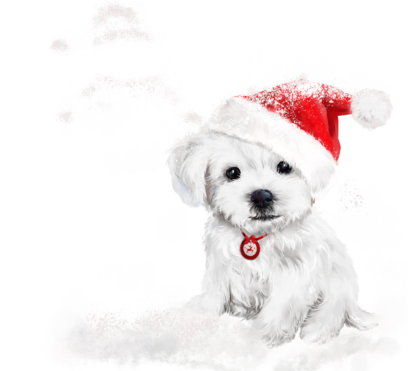 Chiens Dog Puppies Wallpapers Dessin Christmas Dog Christmas