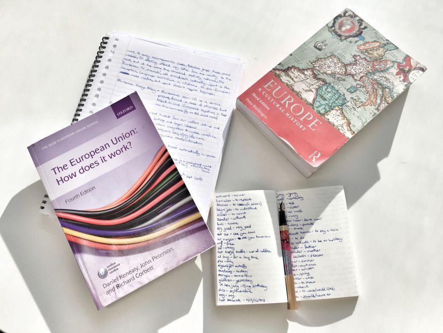 What is an Erasmus Mundus Master's Degree? (с