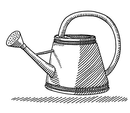 Watering Can For Gardening Drawing
