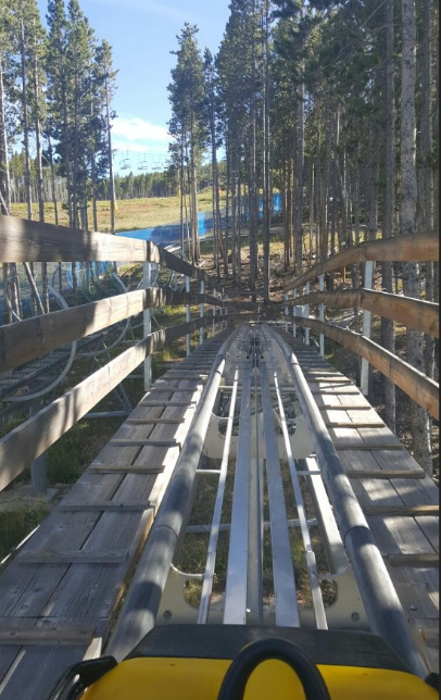 The Gold Run Coaster In Colorado Will Take You On One Memorable Ride Colorado Places To Visit Colorado Springs Night Life Colorado Springs Camping