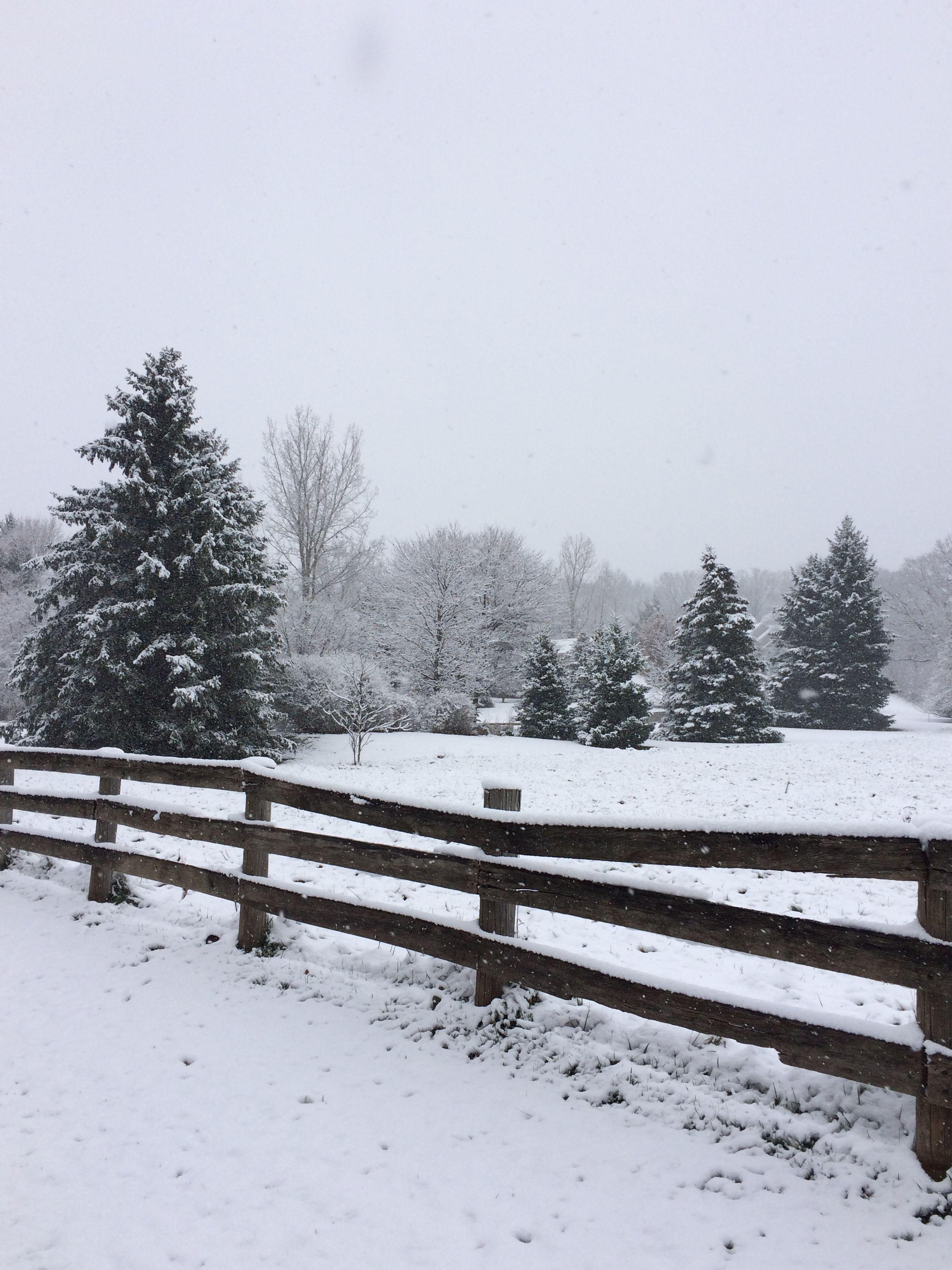 Winter in November 2015