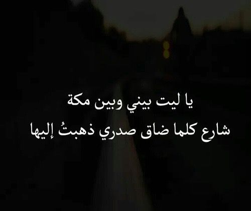 ياليت والله Great Words Words Life Quotes