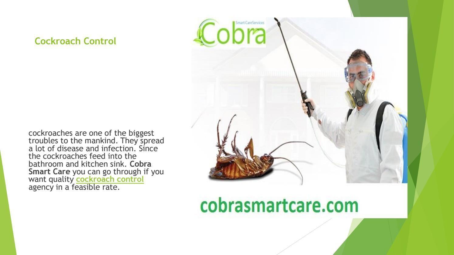 Cobrasmartcare gives service of cockroach control