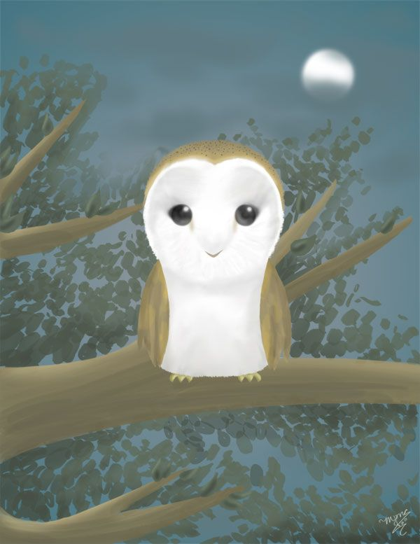 Chibi Barn Owl By Shadowseason On Deviantart Barn Owl Owls Drawing Owl