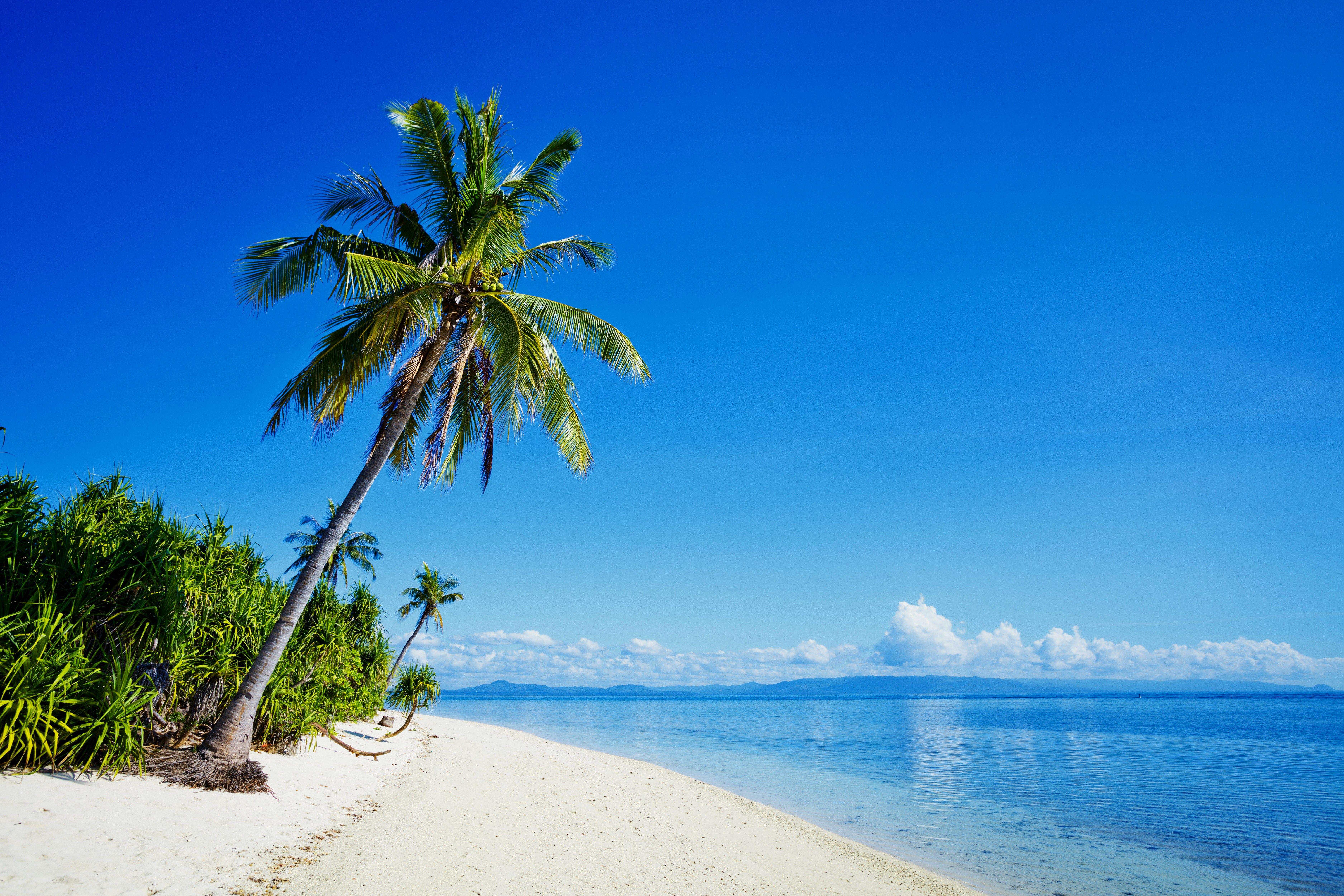 High Quality Beach