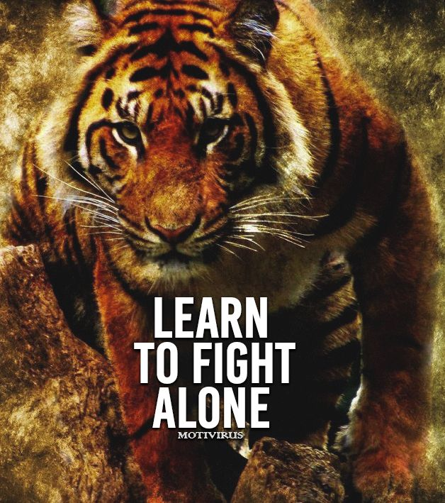 Learn To Fight Alone Motivational Quotes Motivational Quotes