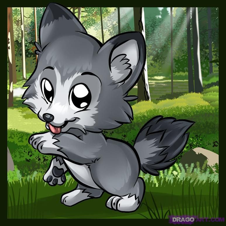 How To Draw A Cute Cartoon Wolf Hundreds Of Drawing Tuts On This Site Cartoon Wolf Cute Wolf Drawings Cartoon Drawings Of Animals