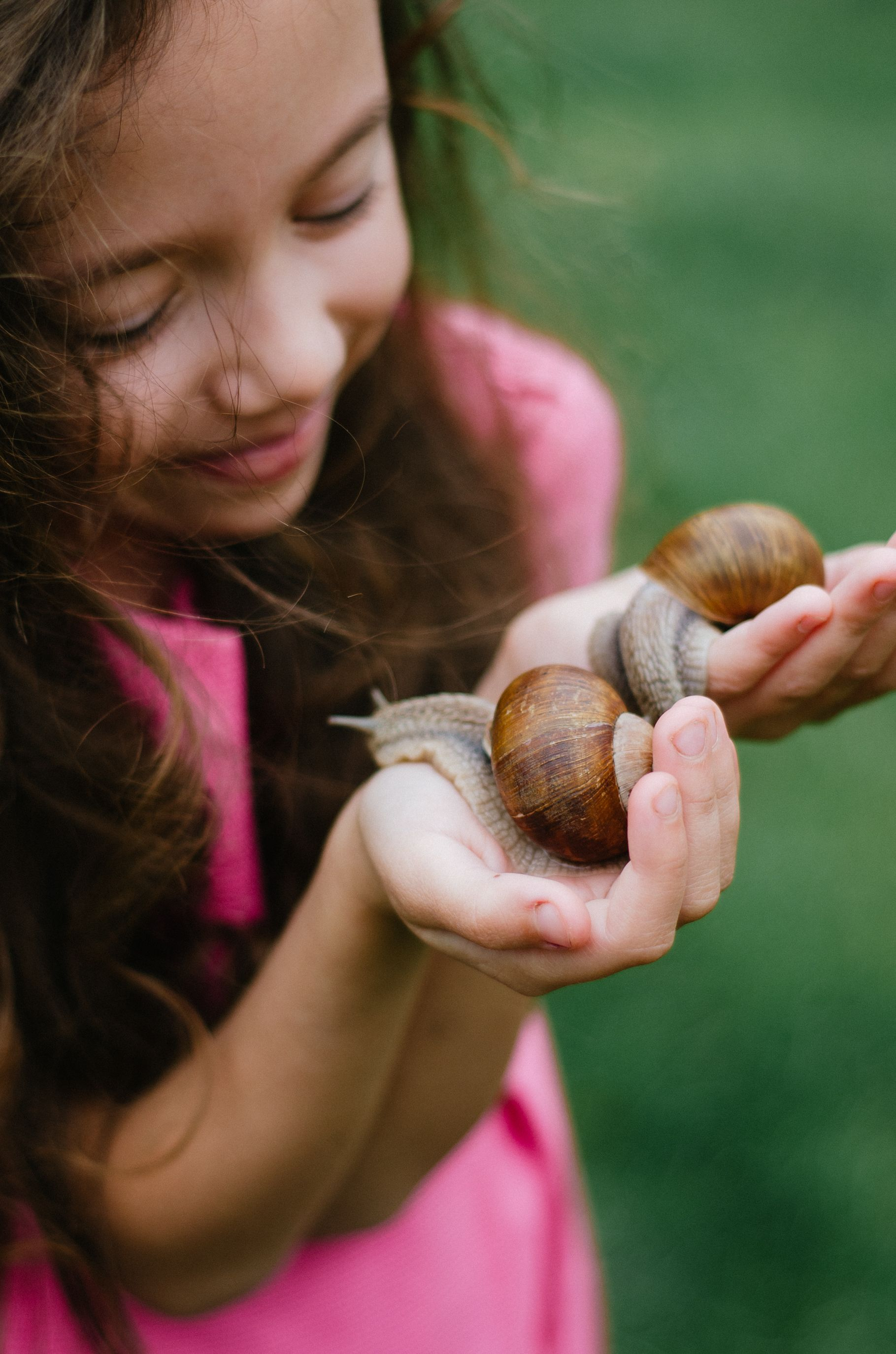 Snails Are Low Maintenance Indoor Pets And Easy To Take Care Of That S Why Snails Are The Best Pets For Your Child Pet Snails Easy Pets Snail