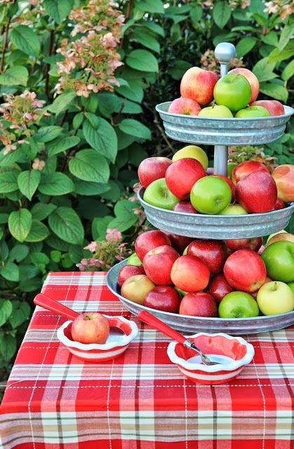 Rattlebridge Farm: Southern Apple Crumble I love the stand the apples are displayed on. I will have to get my hubby to reverse engineer it so we can make one for our home!
