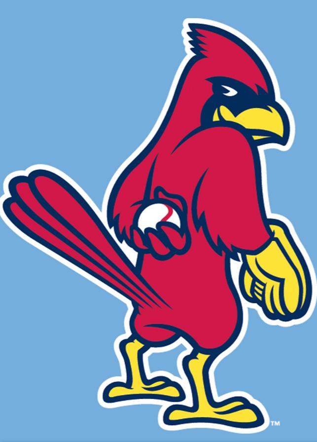 Pin By Nikki Woolford Abeln On Cricut Svg St Louis Cardinals Baseball Stl Cardinals St Louis Cardinals