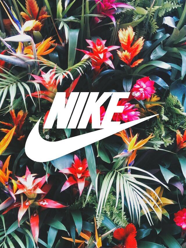 Tropical trustnobodyp jqhbaha pinterest adidas for Bargain wallpaper
