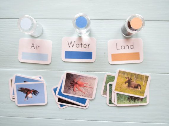 Land, Air, and Water Kit- Montessori Primary Kit with Sorting Cards ...