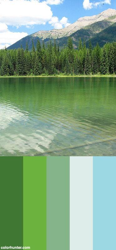 Serene Green Color Scheme