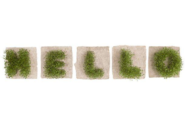 こんなグリーンなメッセージ、すくすくと育てられたら | roomie(ルーミー)