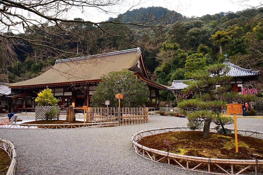 Watch the Best YouTube Videos Online -  嵐山から散策しましたが前回は秋の紅葉の時期に6年くらい前に行きましたね静寂な空間にリセットされた #カメラ好きな人と繋がりたい #写真好きな人と繋がりたい #写真を撮るのが好きな人と繋がりたい #ファインダー越しの私の世界 #amazing #art_of_japan_ #artistsoninstagram #japan #japantrip #japan_of_insta #instagram #instagood #instapic #instalike #instatravel #instagramjapan #travelgram #beautiful #bestjapanpics #ig_japan #dslr #wonderful_places #photooftheday #photography #wu_japan #tokyocameraclub #京都 #kyoto #nikon #二尊院