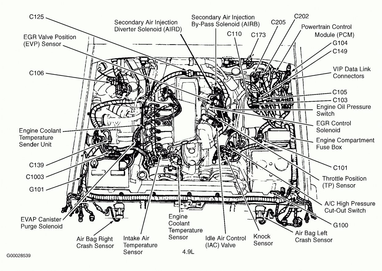1974 Ford F100 Engine Wiring Diagram And Ford Efi Engine Diagram Diagram Schematic Ideas Ford Ranger Ford F150 Engineering