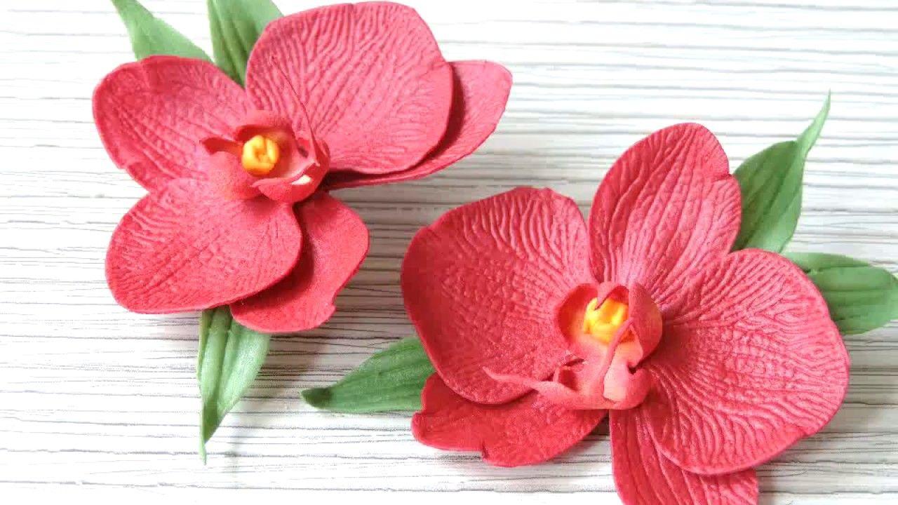 Обои в полоску с цветами фото