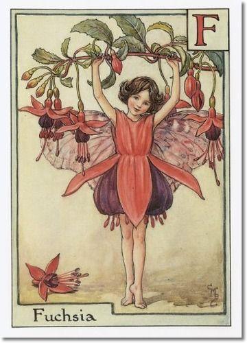 Cicely Mary Barker A Flower Fairy Alphabet The Fuchsia Fairy Painting Fuschia Is A Dancer Dancing On Her Toes Flower Fairies Fairy Art Vintage Fairies
