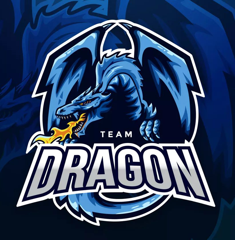 Team Dragon Sport And Esport Logo Vector Template by