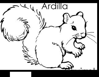 Imagenes Para Dibujar En Ingles Y Espanol Animales Del Bosque Para Colorear Ingles Espanol Dibujo De Ardilla Paginas Para Colorear De Animales Dibujos