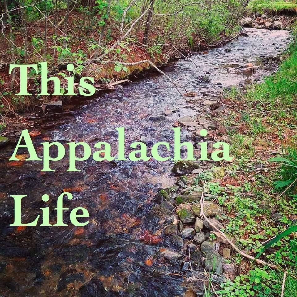 Seeking To Rehumanize A Region Ignored Or Scorned By Many In The Us We Write About This Amazing Region And All Appalachia Hillbilly Elegy Extraordinary People