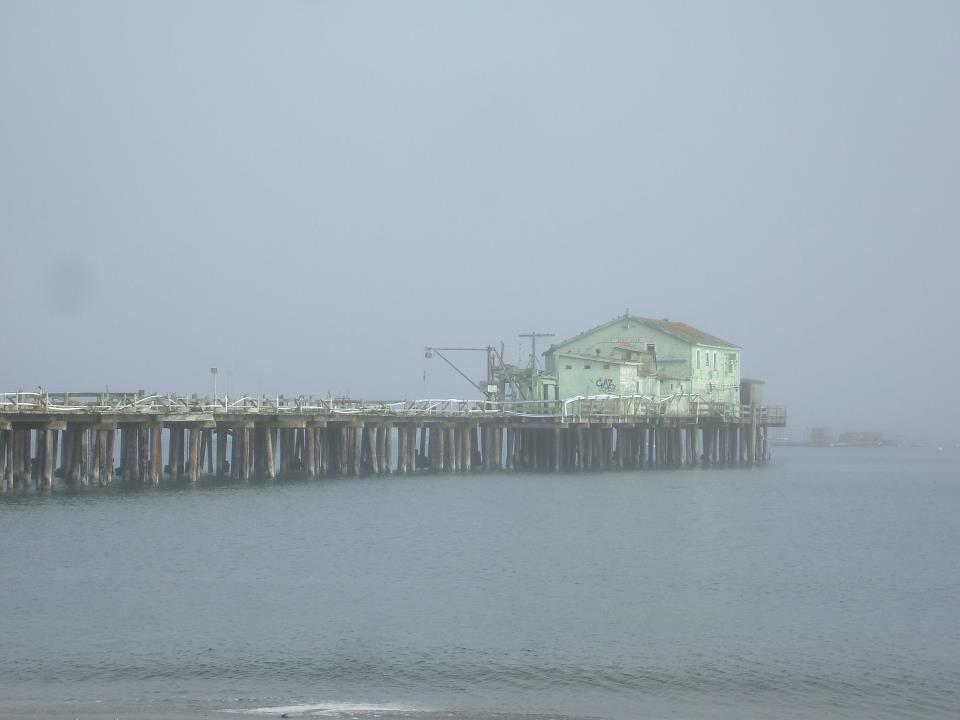 Half Moon Bay,California