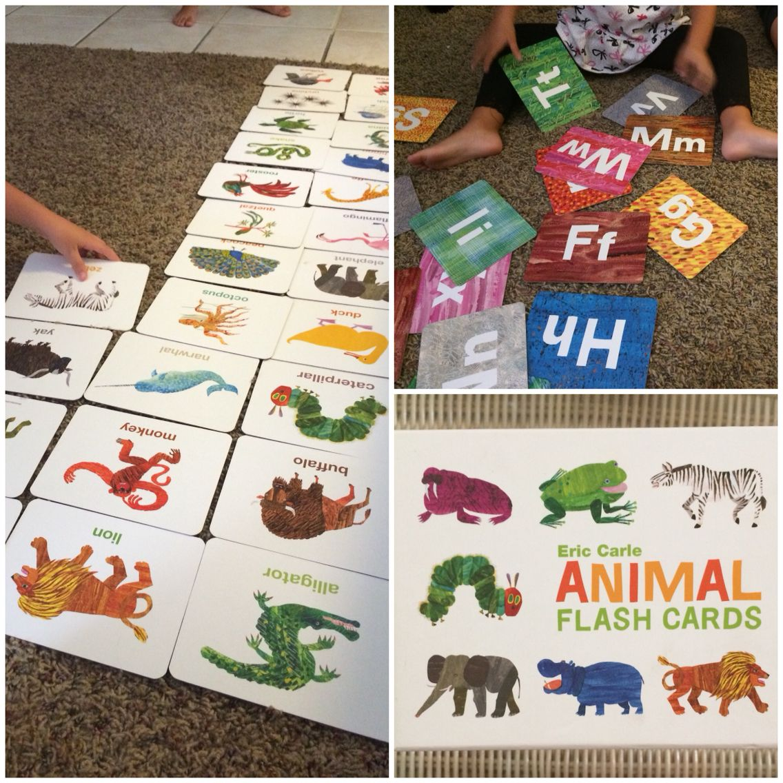 Eric Carle Animal Flash Cards Alphabet Recognition