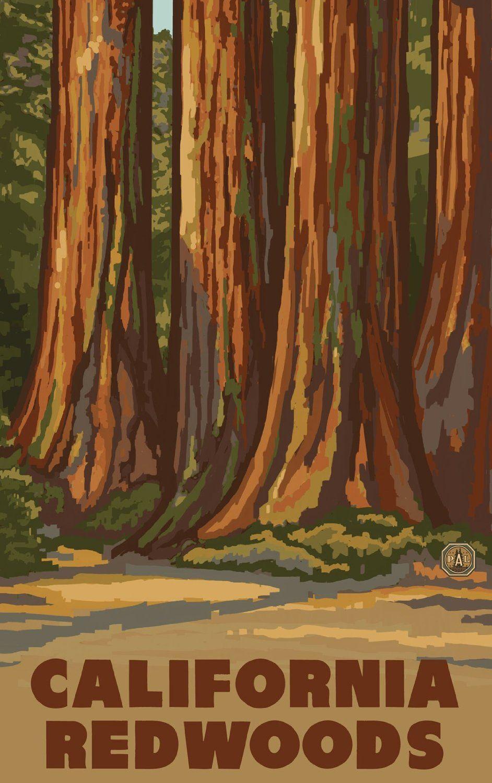 Amazon northwest art mall california redwoods trees artwork amazon northwest art mall california redwoods trees artwork by paul a lanquist sciox Choice Image