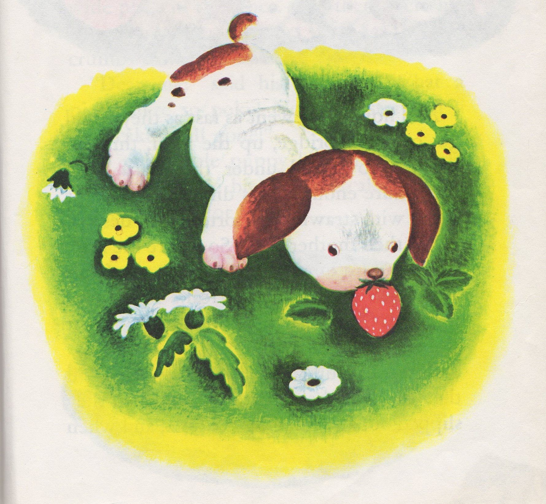 Biography Memories Little Puppies Puppies Puppy Party