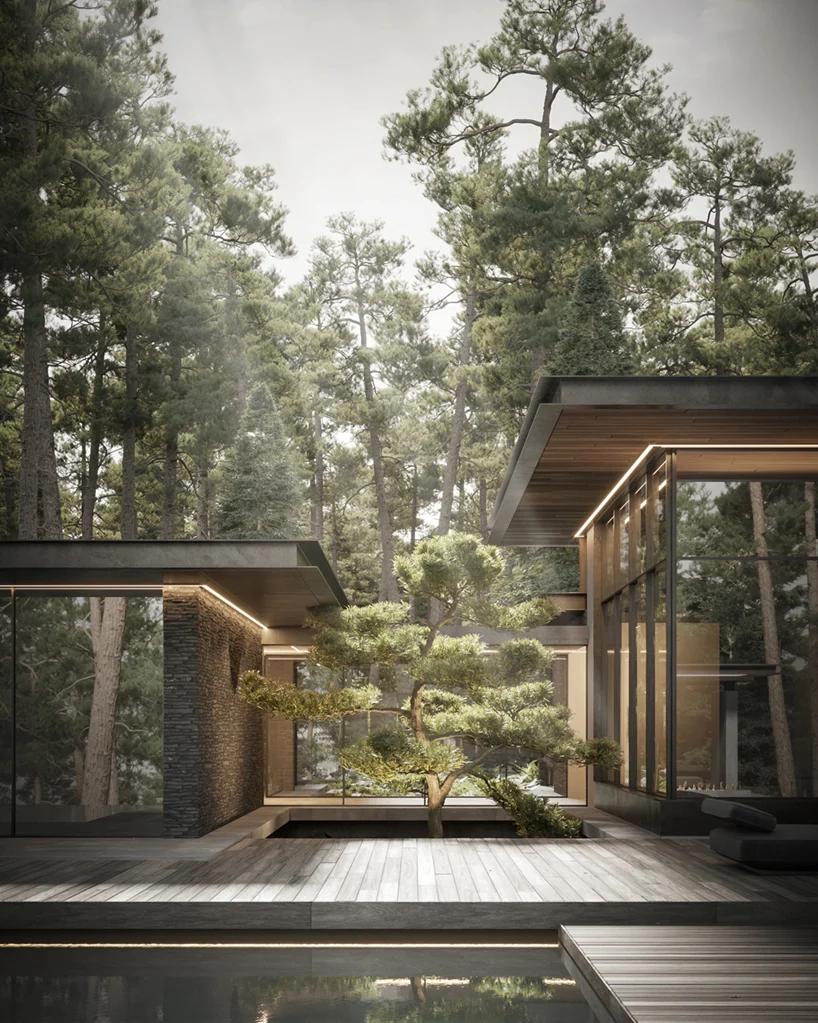 dezest envisions pine cove house as forest retreat